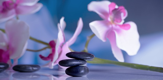About Massage Therapy